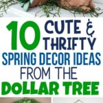 Easter Dollar Tree ideas, Dollar Tree DIY ideas and more, Spring decor Dollar Store, Spring decor Dollar Store projects, spring decor DIY ideas, Spring decor Dollar Store ideas simple, Spring decor Dollar Store flowers, Spring decor dollar store candle holders, Spring decor signs, Beautiful Dollar Tree Spring Decor Ideas, Spring decor dollar store fun, Spring decor, Spring decor farmhouse, Spring decor front porch, Spring decor ideas, Spring decor rustic, Spring decor dollar store pool noodle